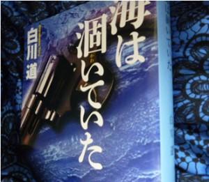 2014-1113sirakawa1